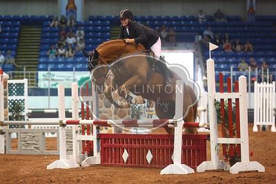 OHW English Horse Show 2015