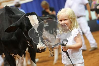 OHW Holstein Pee Wee Showmanship 2015