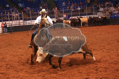 Old Home Week Cattle Penning 2014