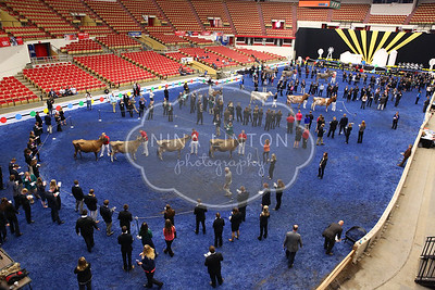 World Dairy Expo 2015 Judging Contests